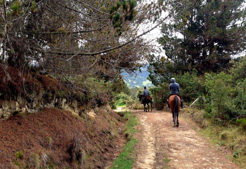 Bogota Ausritt 2