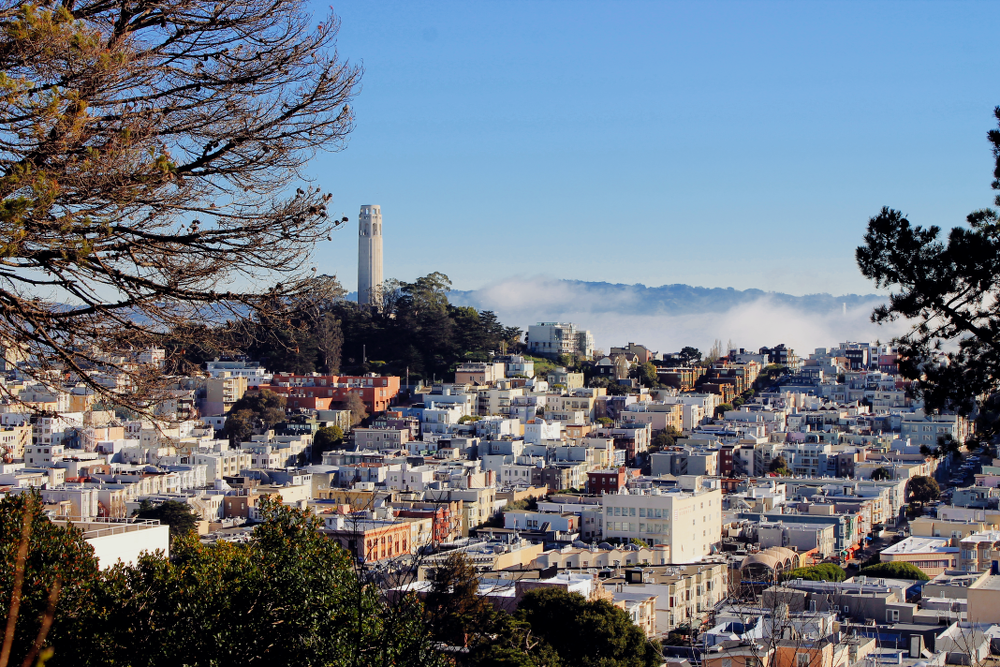San Francisco View Coit Tower
