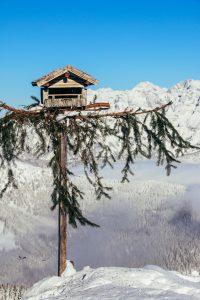 Wildenkarkogelhütte Saalbach Hinterglemm