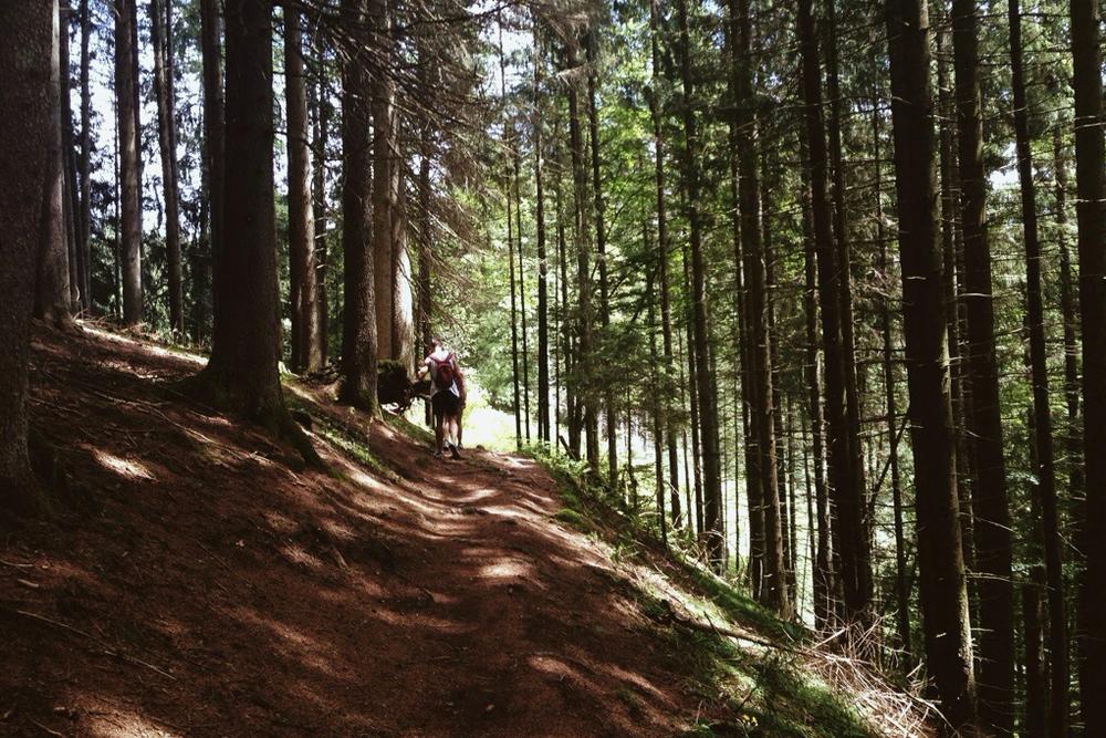 wandern-schwarzwald